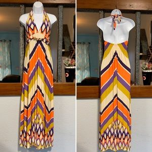🦎 Boston Proper Halter Maxi Dress Women Medium